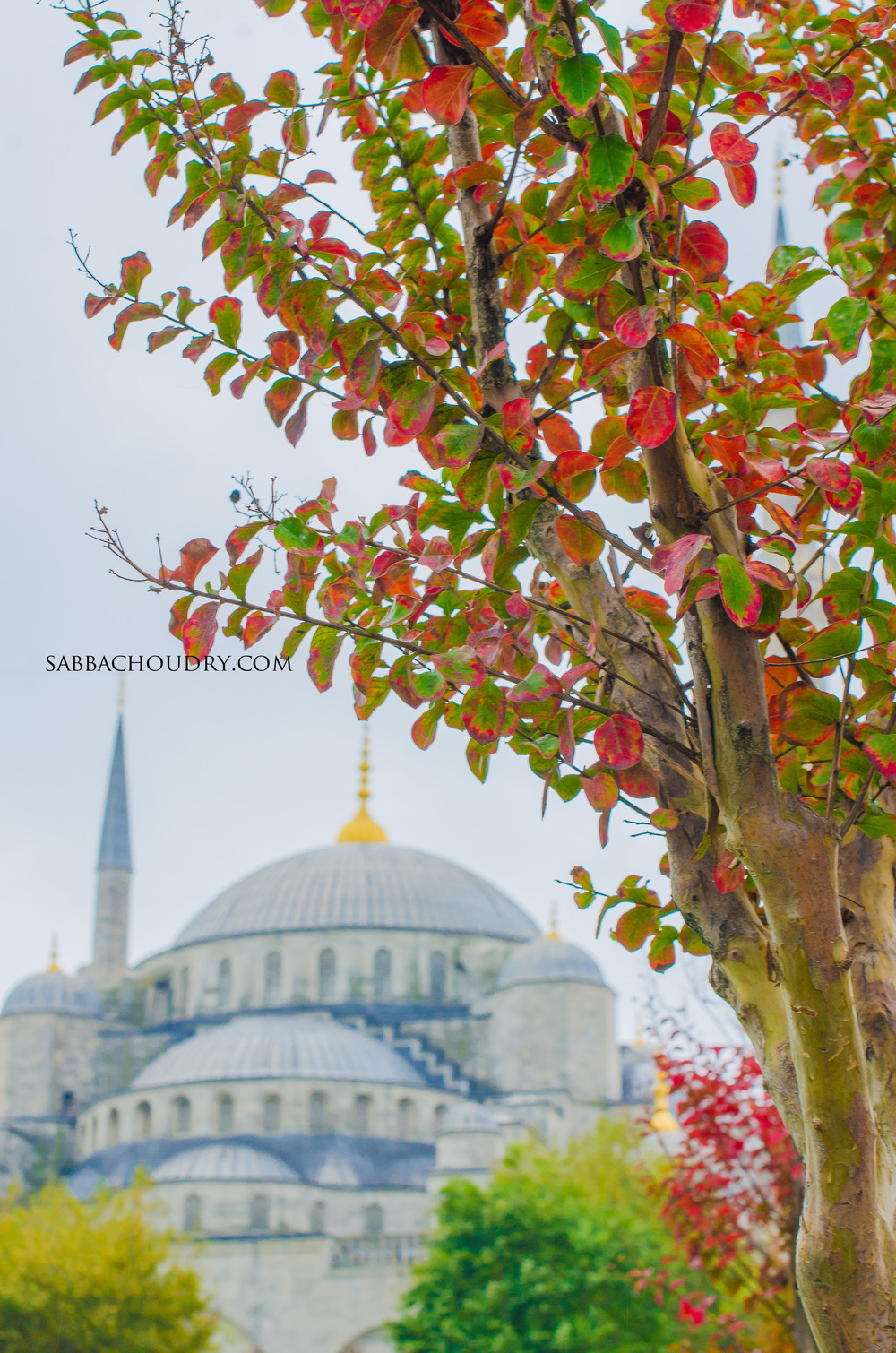 Autumn colours surround the Blue Mosque