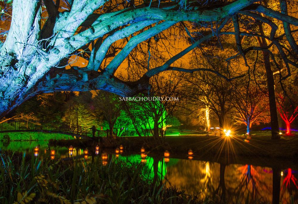 Syon Park, London