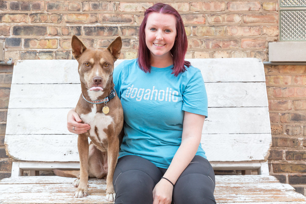 Kelly Assistant Manager Kelly recently graduated with a degree in American sign language and is a licensed interpreter. She fostered dogs for One Tail At A Time until she made her last foster pup officially hers. However, that hasn't made her love her favorite Dogaholics dogs any less!
