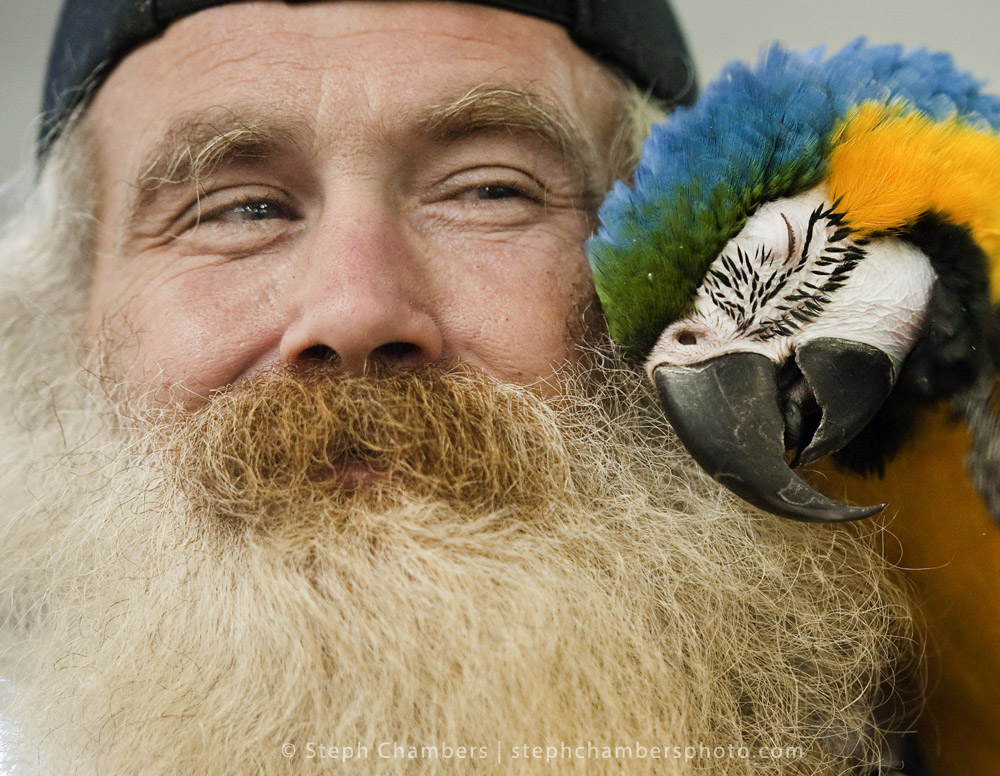 John Weaver of North Braddock shares a moment with his 12-year-old macaw Drew Barrymore during the OHPA bird fair on Sunday, Oct. 18, 2015 at the Circleville Volunteer Fire Department near Irwin. Three more events are planning for Pittsburgh in 2016.