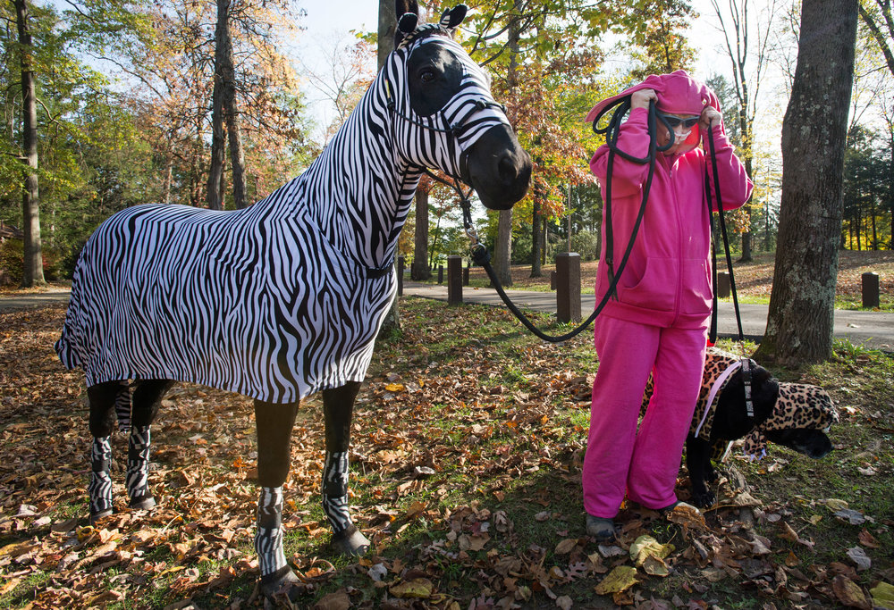 Laurene Donnelly of North Huntingdon adjusts her rabbit outfit before walking her horse Mishka, dressed as a zebra and her dog Uriel, dressed as a cheetah during the annual Whisker Walk on Saturday, Oct. 29, 2016. Whisker Walk fundraises all programs at the Humane Society of Westmoreland County.