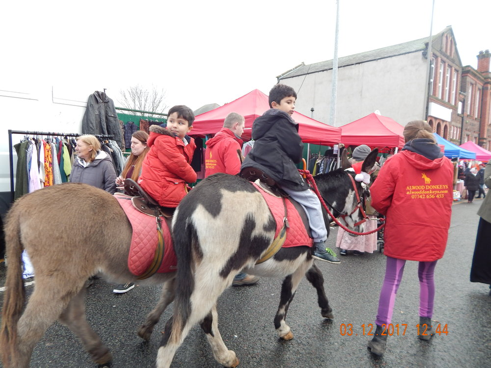 Donkeys at Granby Street Christmas Market 2017