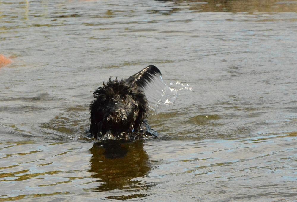 Melvin badar för första gången