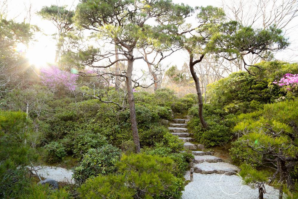 Japan Blog-3.jpg