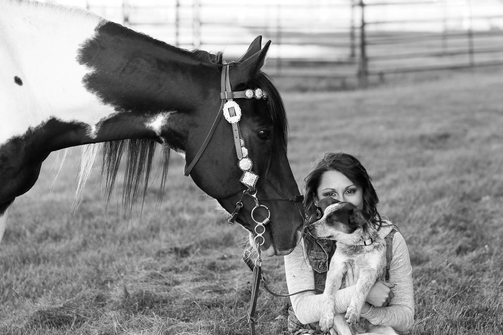 horse photography  with puppy in andover minnesota