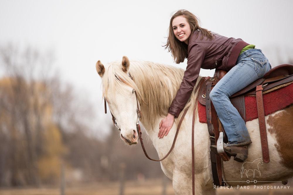 Minnesota horses