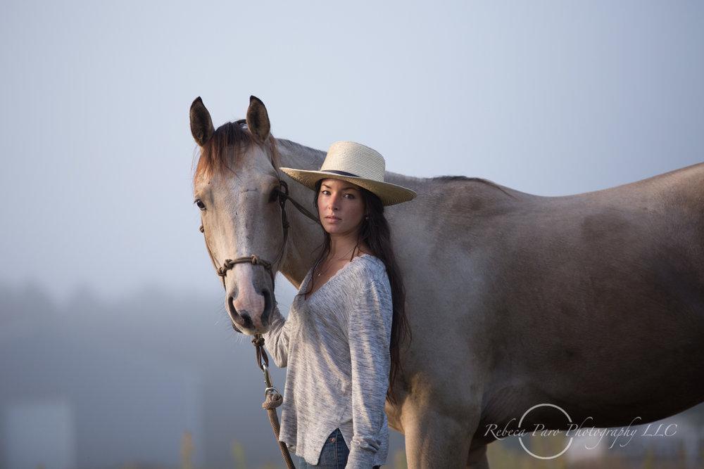 Equestrian portraits horses