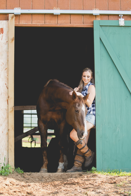 Barn horse