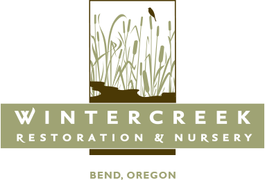 WinterCreek Restoration & Nursery