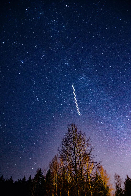 starry2016012.jpg