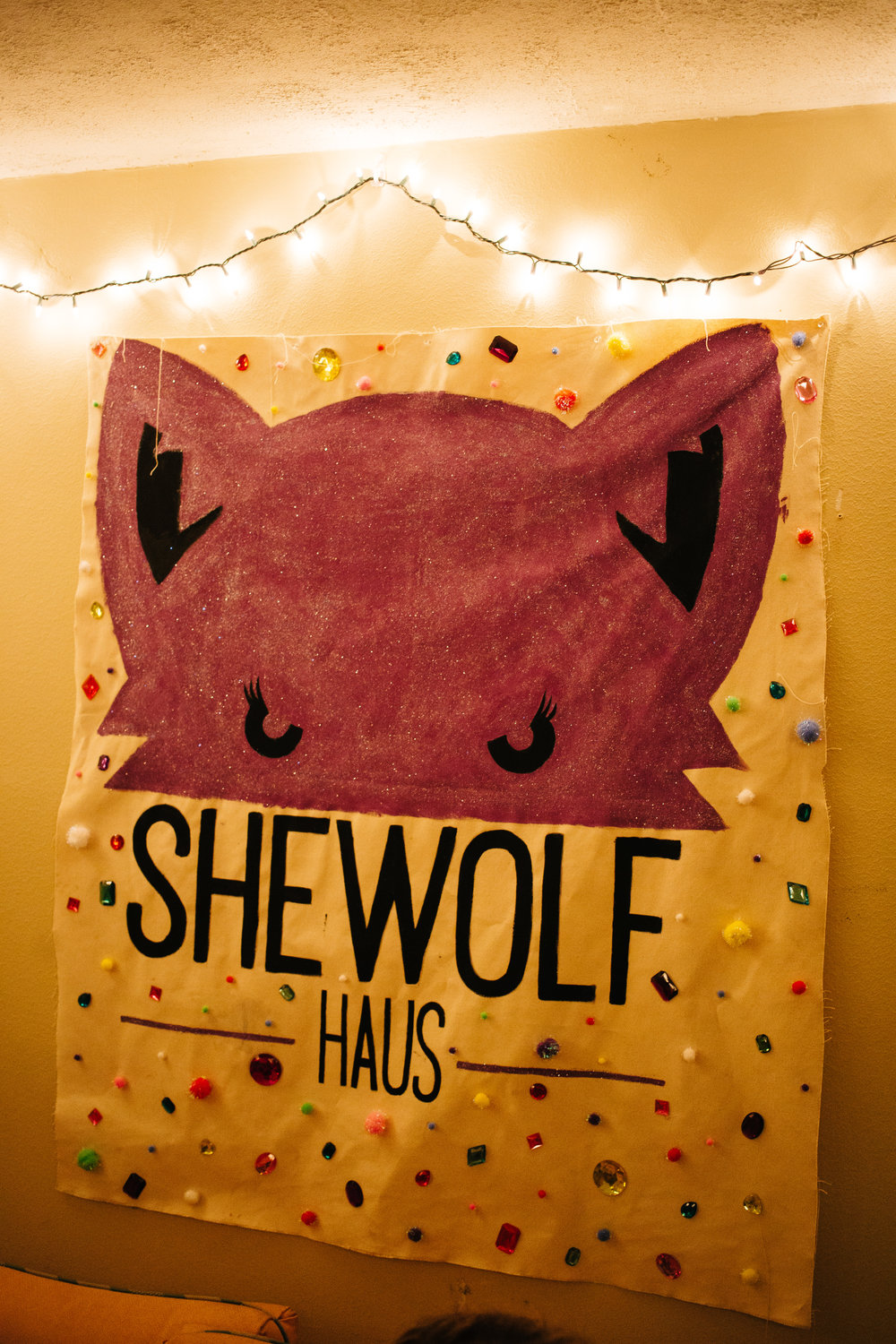 A banner hung in the living room of the Shewolf Haus.