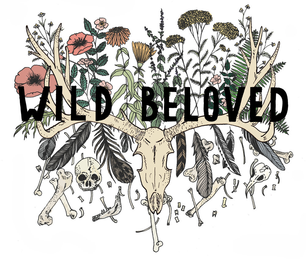 Website Banner for  Wild Beloved  , 2015
