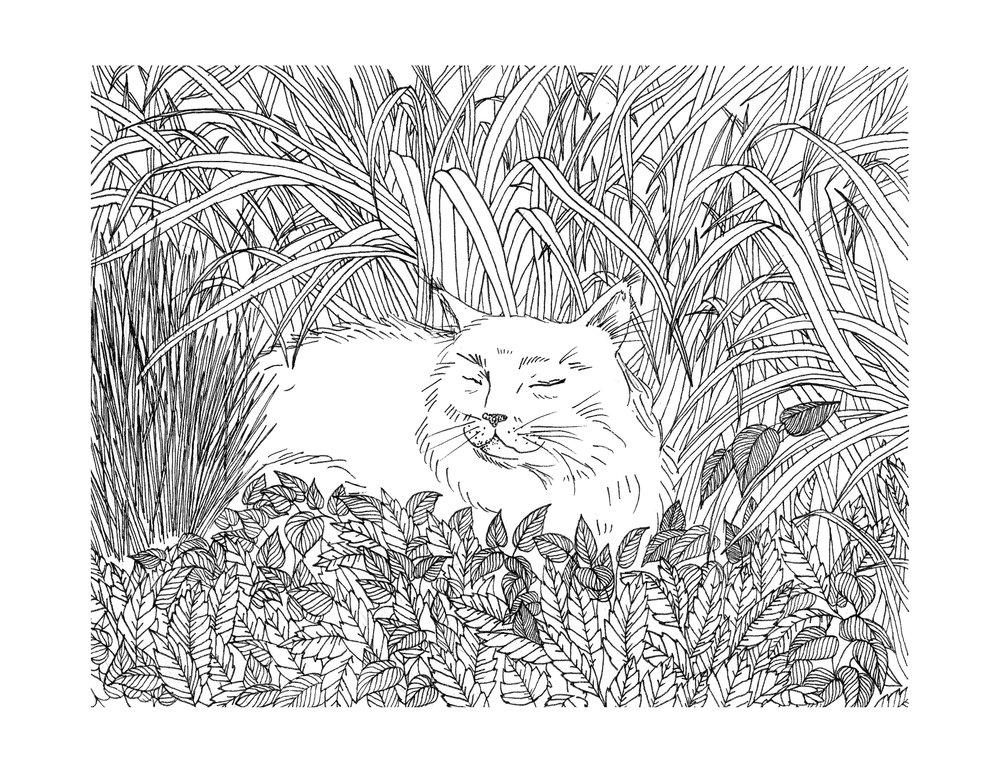 A Cat in Your Garden. 2015