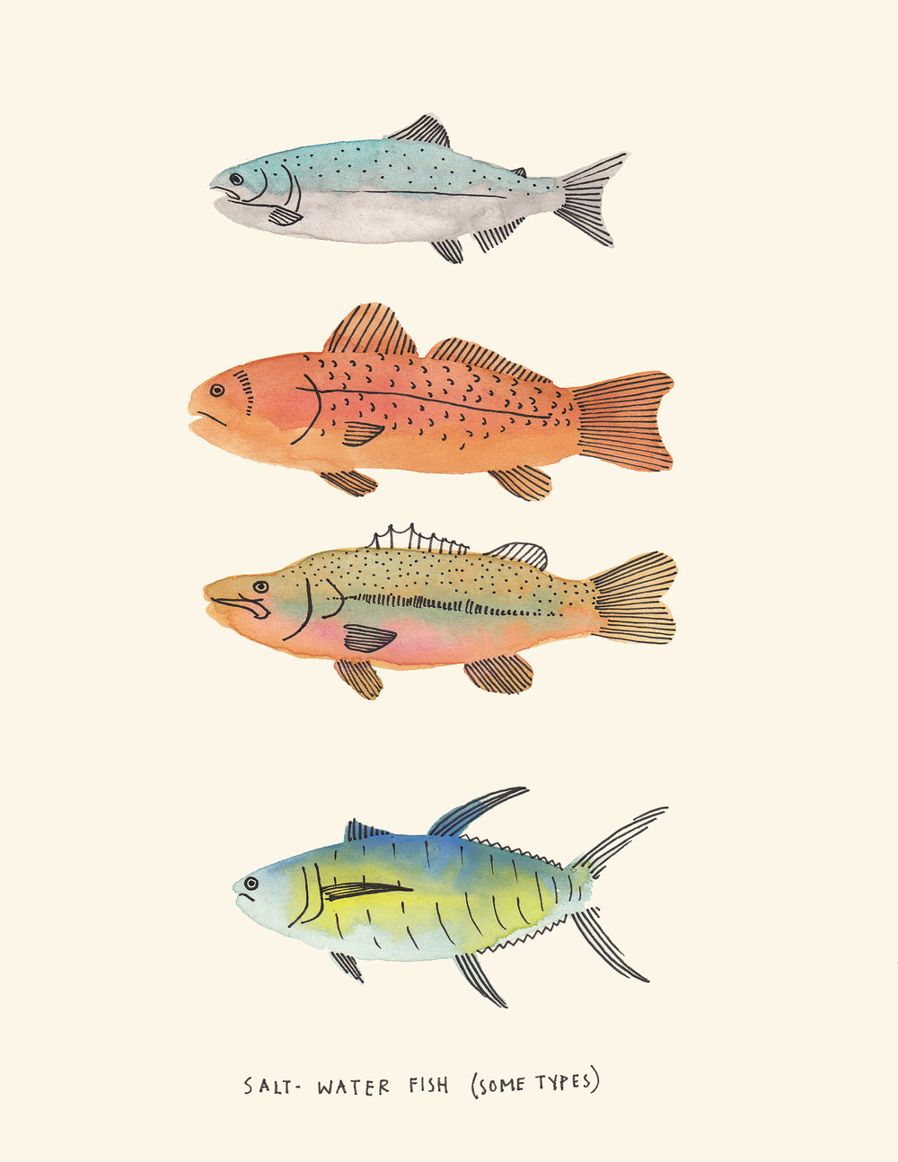Some Types of Fish, 2015