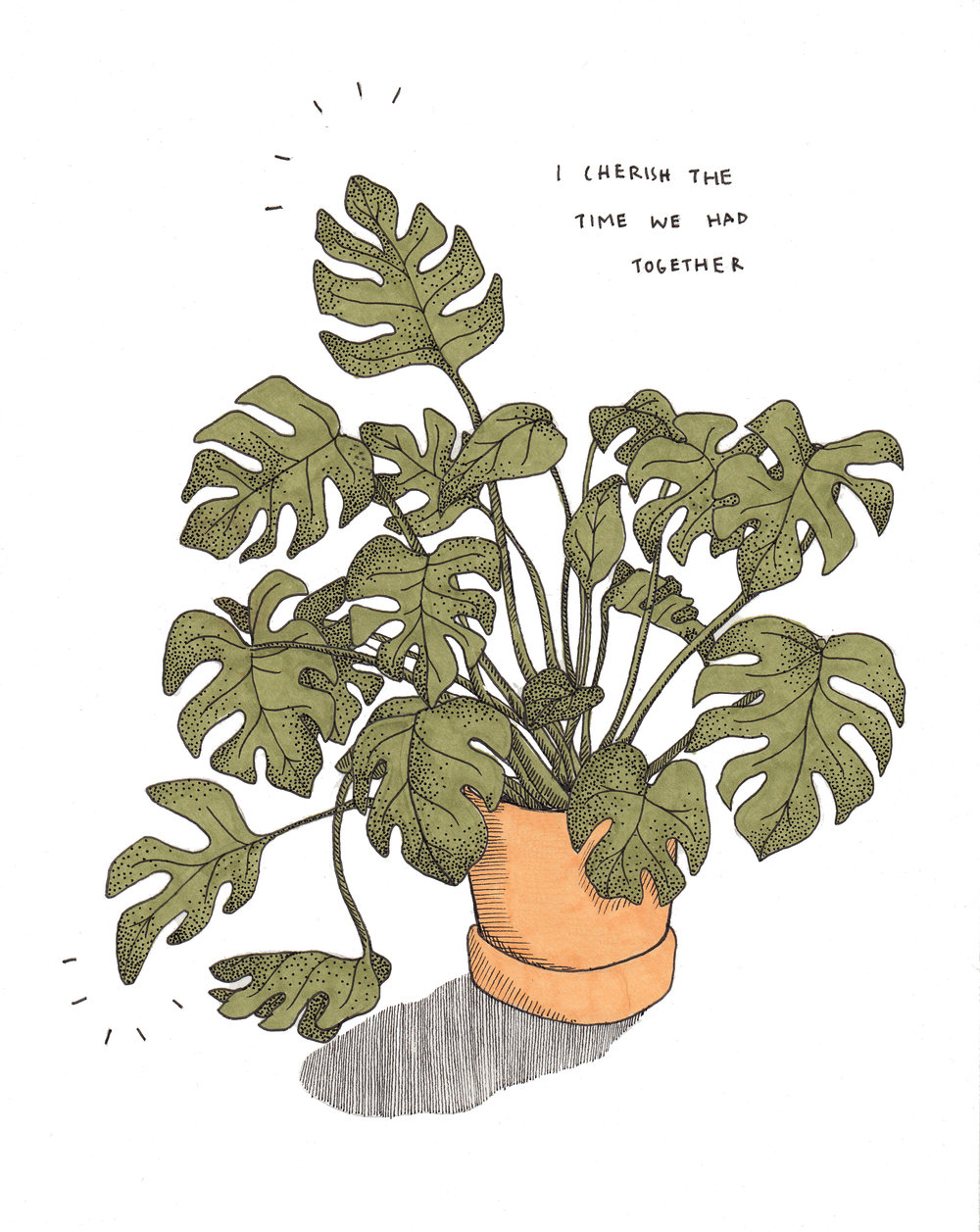 Kayleen's Plant. 2018