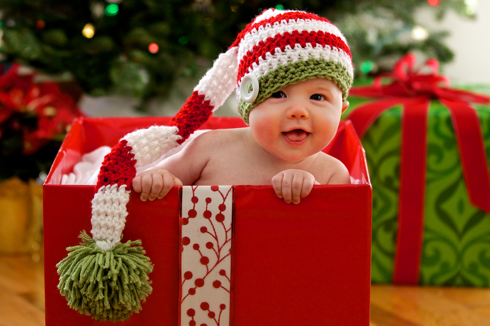 Milo Christmas.jpg
