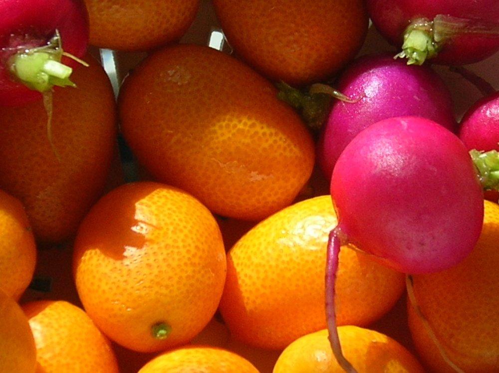 Radishes and Kumquats.jpg