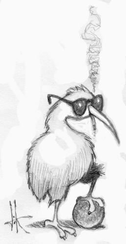 Kool Kiwi.jpg