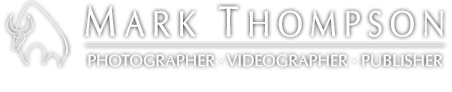 Mark Thompson media