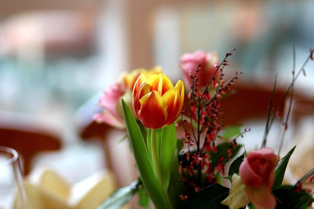 Frühlingsblumen auf Tisch.jpeg
