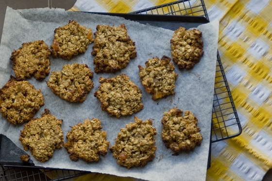Sneaky-Veg-Tropical-Cookies-Vegan-Healthy-Recipe