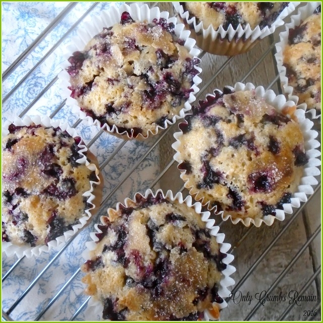 3 Bilberry & Spelt Muffins.jpg