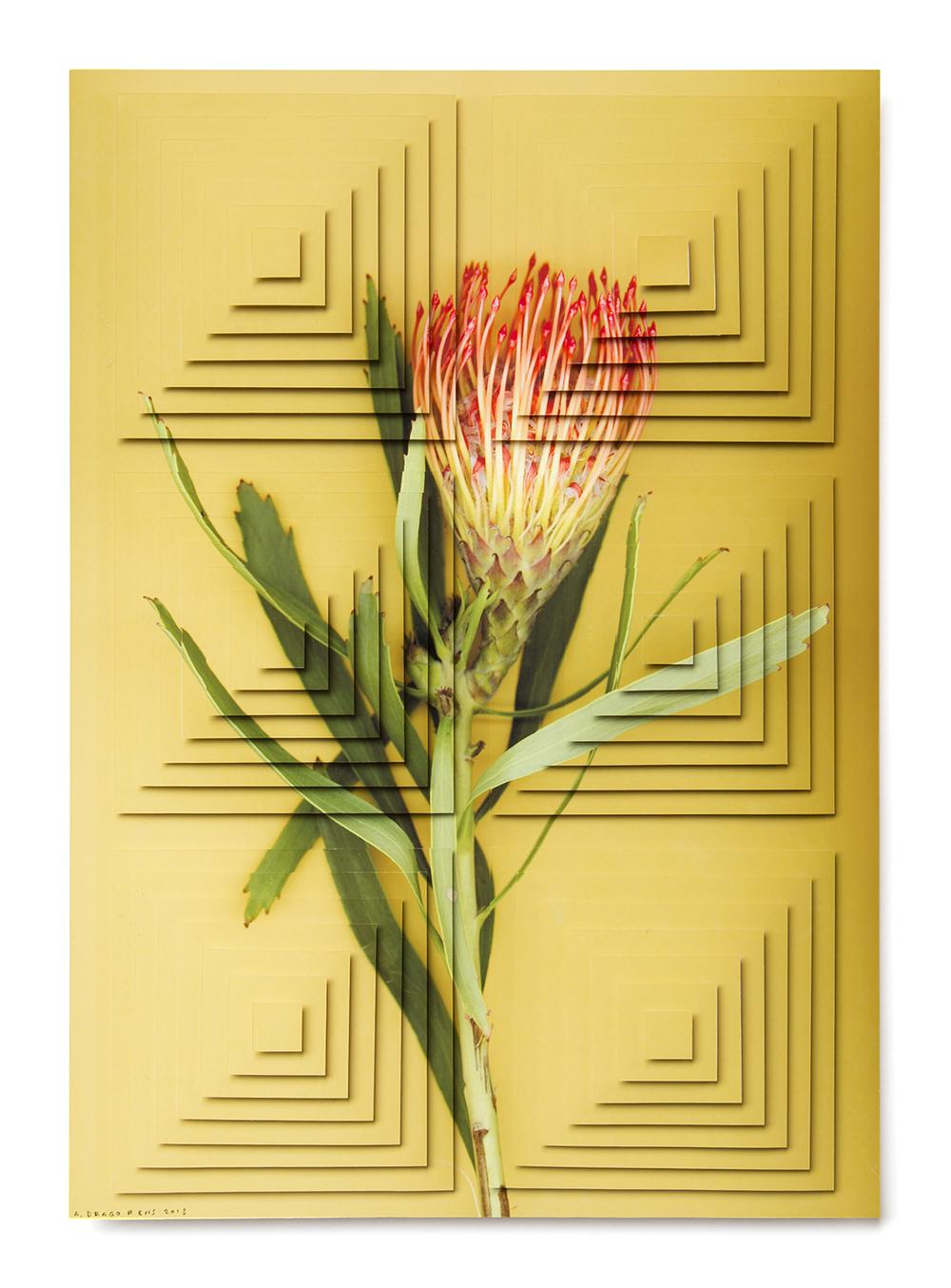 ziggurat fiori DR3.jpg
