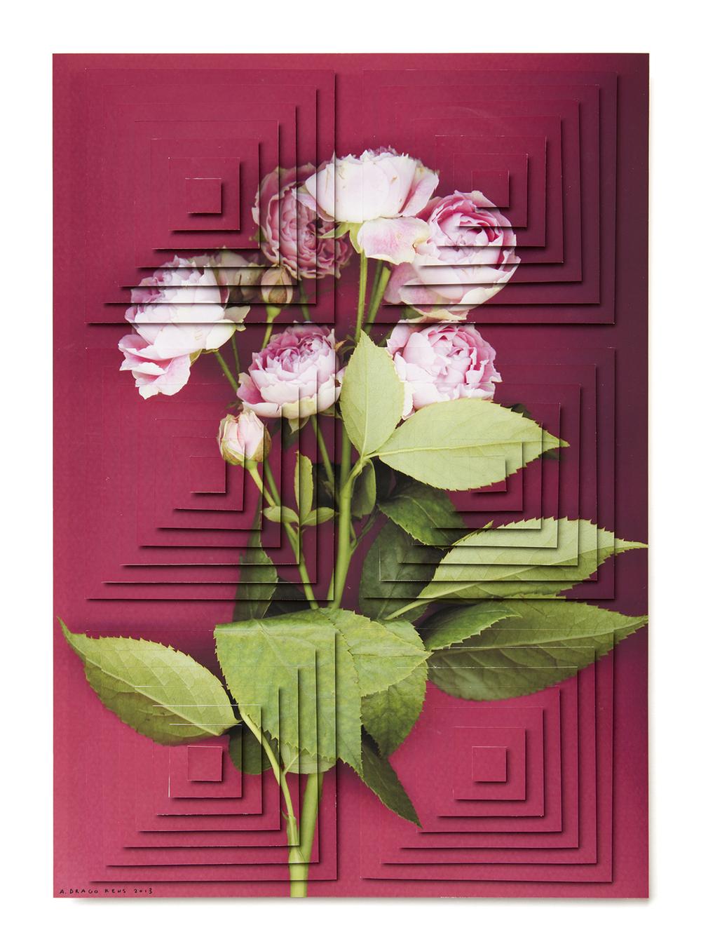 ziggurat fiori DR4.jpg