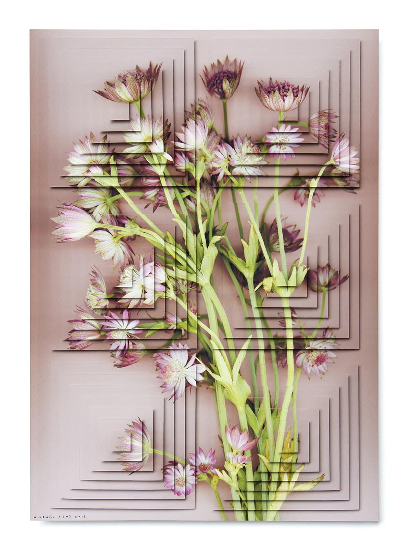 ziggurat fiori DR5.jpg