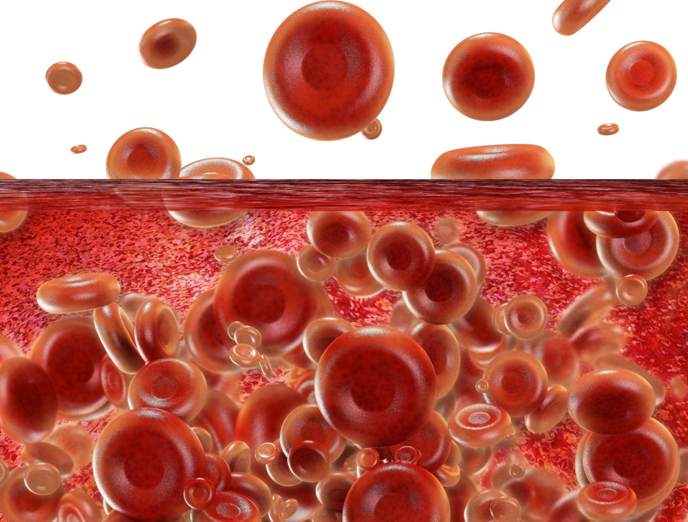 Platelet Rich Plasma Therapy - PRP