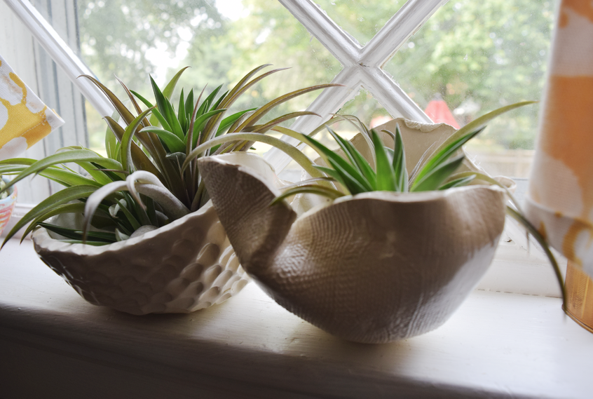 Our organic drape bowls are perfect for display- votive candles, fruit, air plants, potted plants & succulents, keys- you name it!
