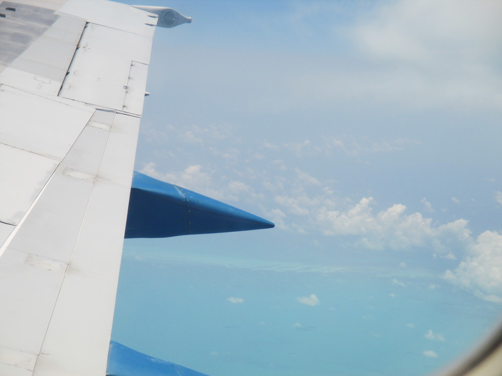 Airplane wing.jpg
