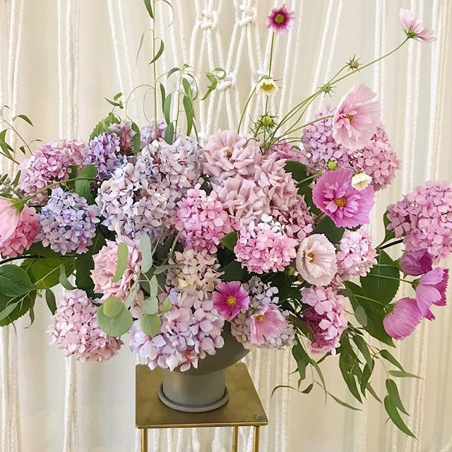 At last, some abundance from the garden! 💕💙💜 #pnwgarden  #thedeerdonteatthese 🦌 #hydrangeanigra #cosmos #seasonalfloralalliance #growfloret