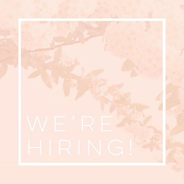 We are in need of extra floral design/set-up and strike crew for an amazing wedding we have on February 23, 2019!  We will need floral design/styling help from Wednesday, Feb. 20 through the event and set up and strike crew on Saturday and Sunday, the 23rd and 24th.  If interested, please shoot us an email with resume/relevant experience to jeny@visualnarrativeds.com!  We look forward to creating a magnificent event with you! . . . #ocalawedding #centralfloridaweddings #floridawedding #ocalafloraldesign #centralfloridaphotographer #centralfloridaevents #centralfloridabride #floridafloraldesigner #ocalafloraldesigner #ocalaflorist #ocalaevents