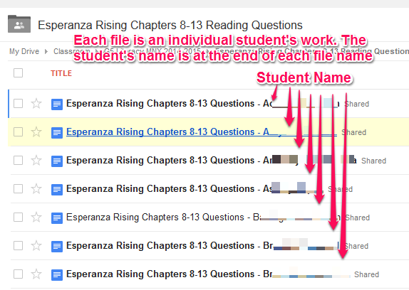 questions set on esperanza rising Learning targets ongoing assessments i can find evidence in esperanza rising that will support my inferences about how esperanza changes throughout the novel i can analyze how esperanza responds to a key event.