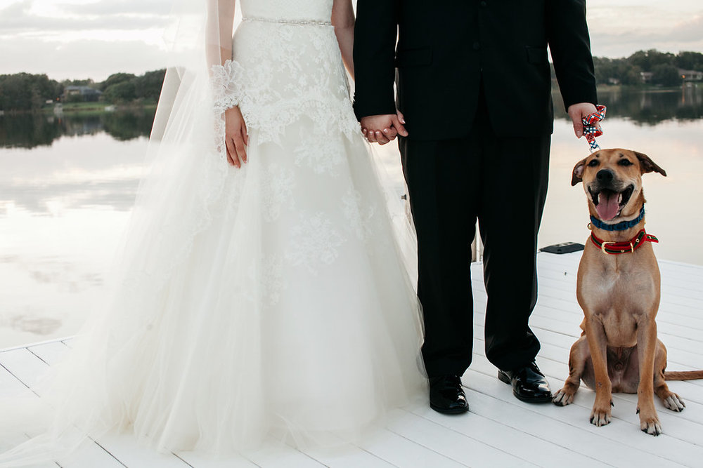 Nothing completes a wedding like a good pup to stand by your side