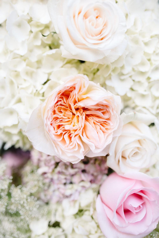 Peach peonies + blush garden roses