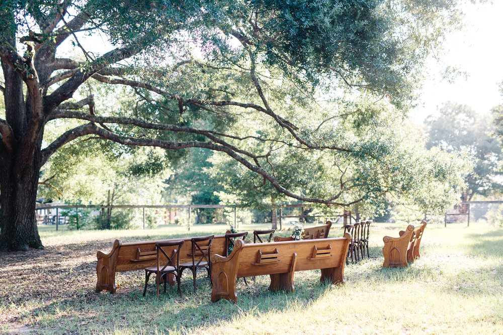 Ceremony with church pews under the oak tree