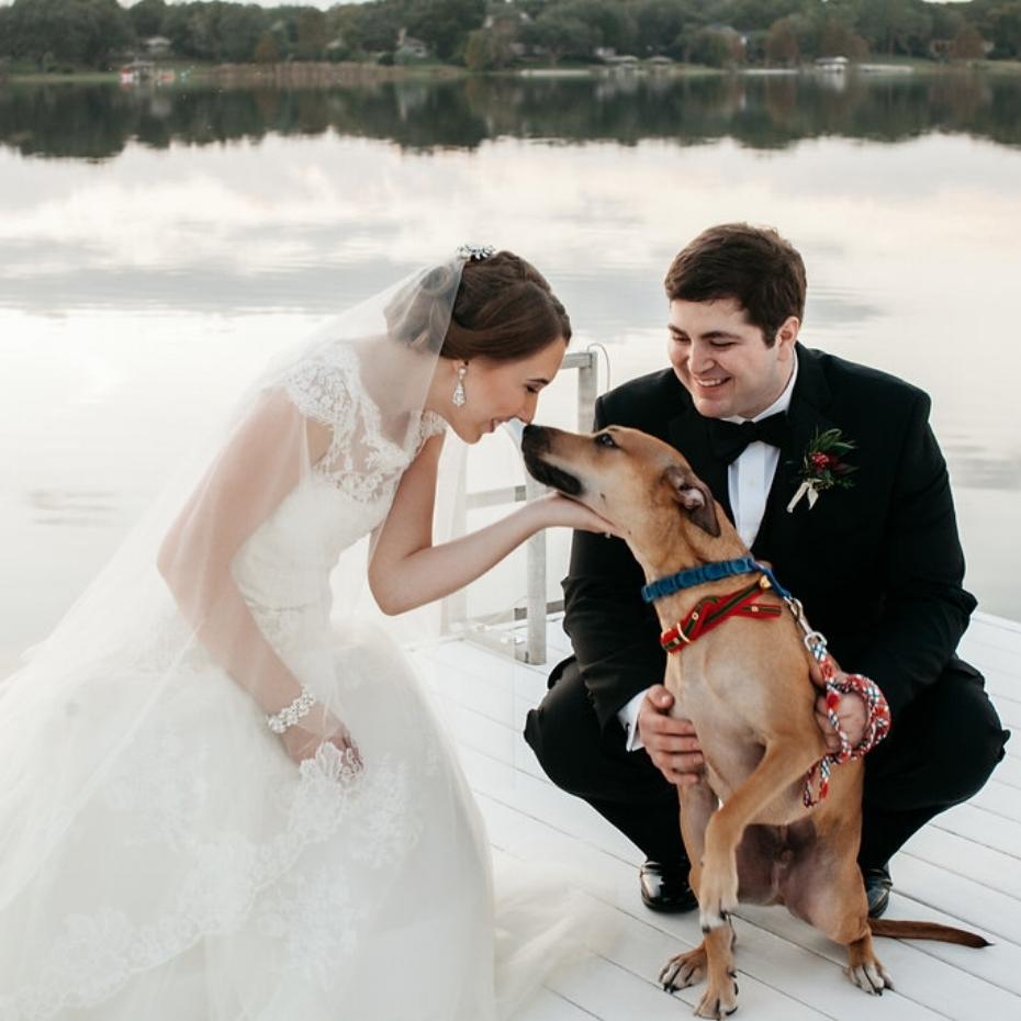Bride, groom, & dog photo