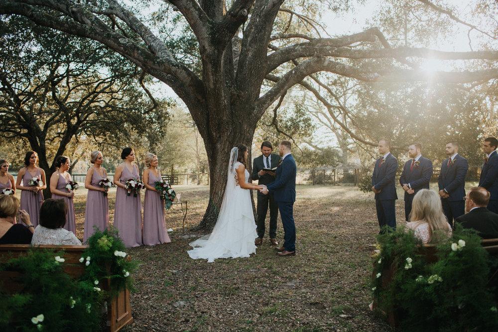 Beautiful wedding ceremony among the trees