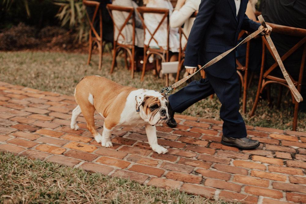 Katie Blue ribbon weddings Favorites-0033.jpg