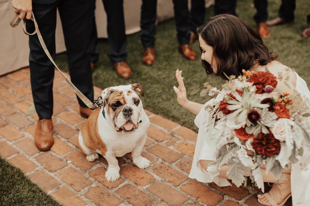 Katie Blue ribbon weddings Favorites-0030.jpg