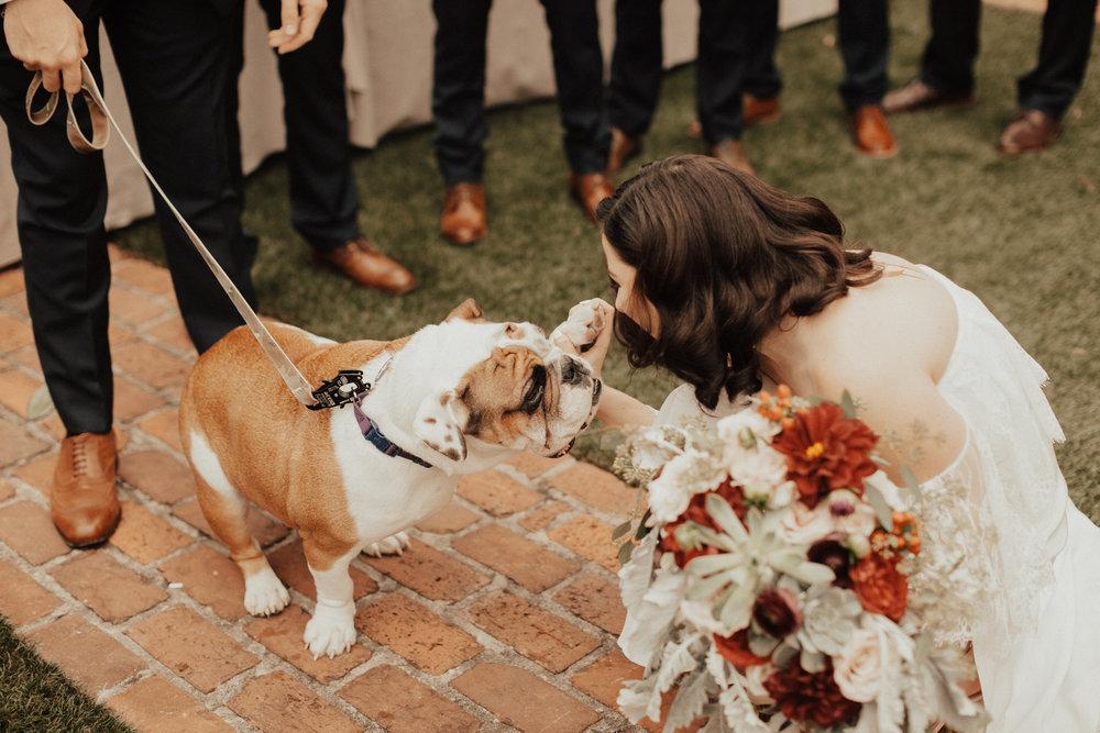 Katie Blue ribbon weddings Favorites-0031.jpg