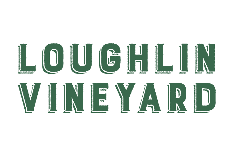 Loughlin Vineyard