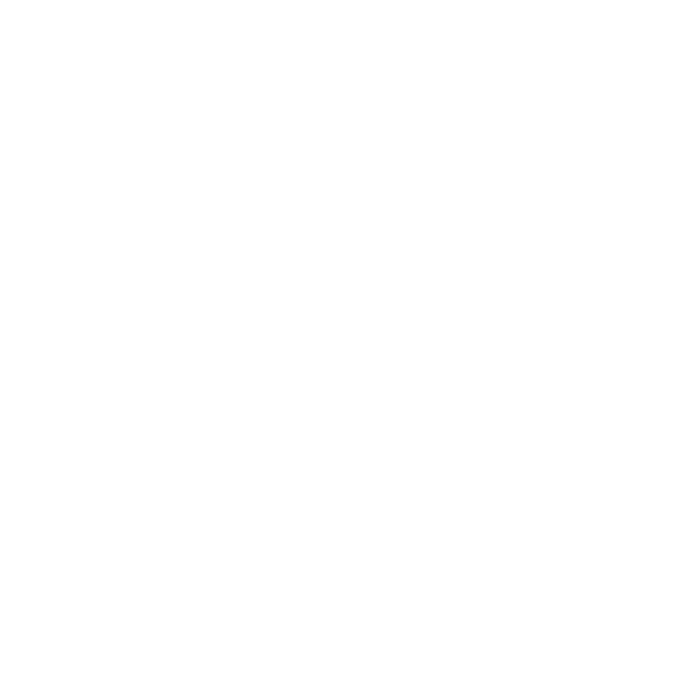acermex.png