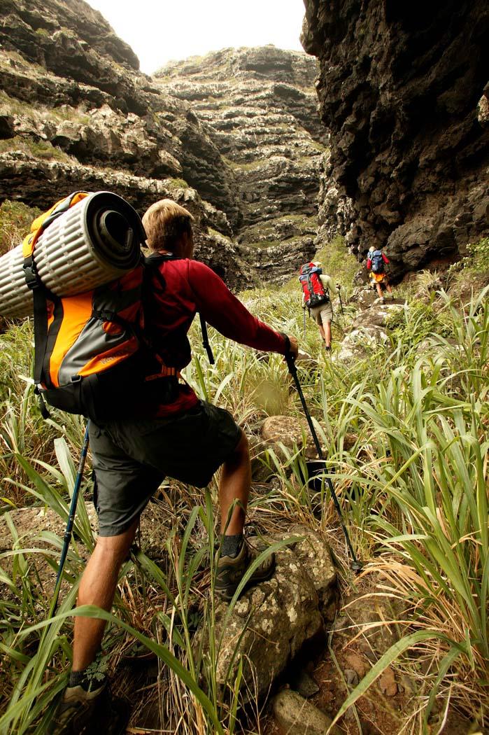 Into the canyon copy.jpg