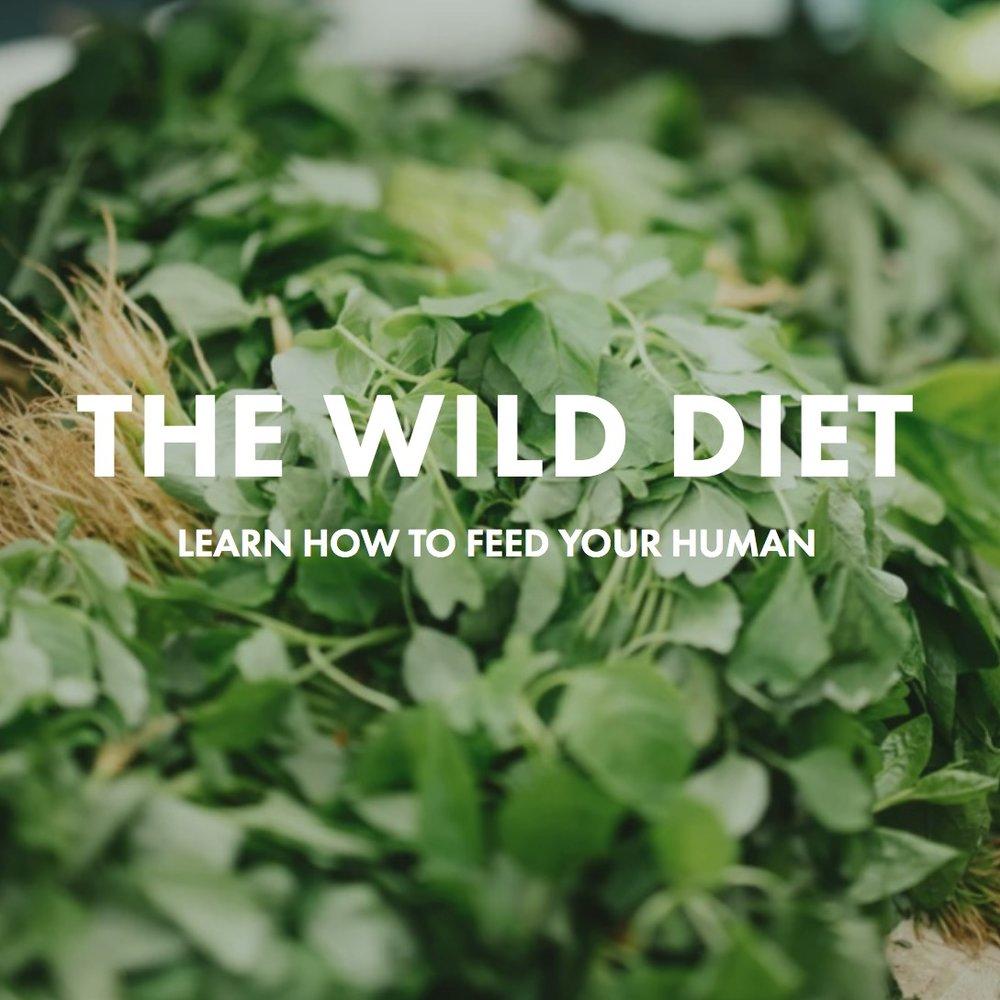 HEALTH COACH JOHN - The Wild Diet Program