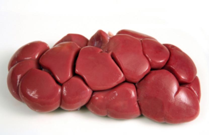 Organ Meats - AKA Natures multi-vitamin