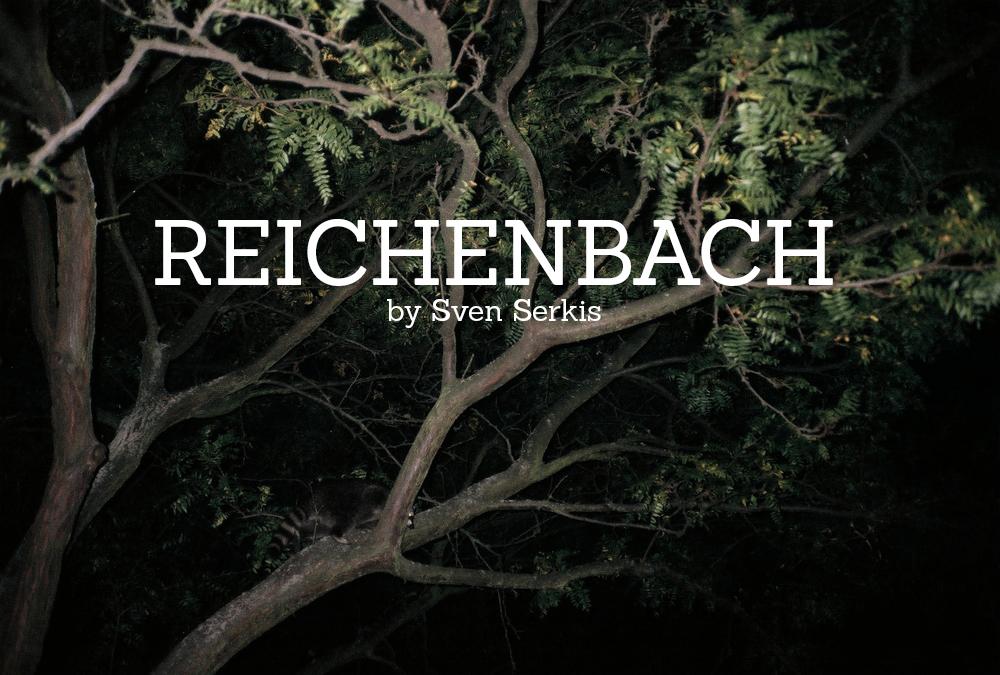 reichenbach29.jpg