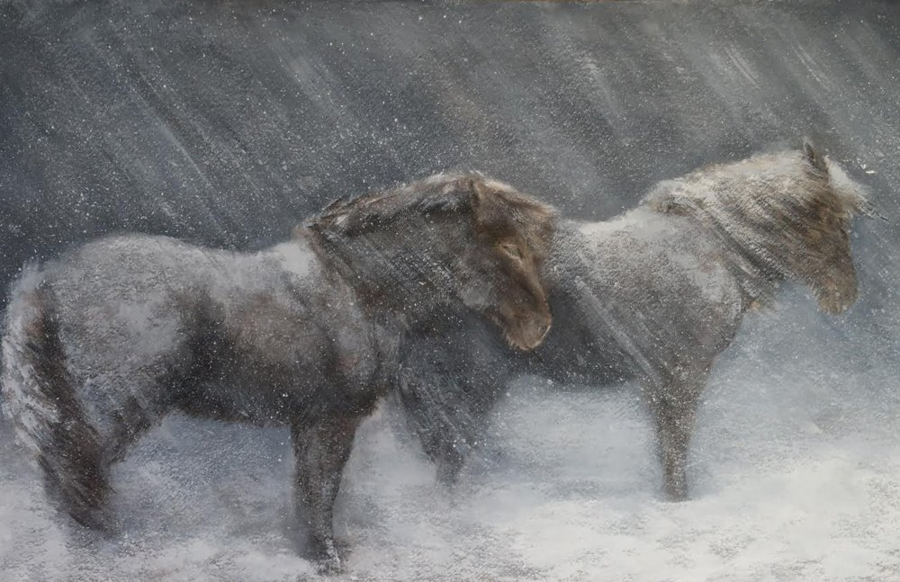 """""""Ponies"""" by Tamara Schneider"""